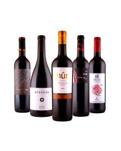 Rotwein-Genießer-Paket
